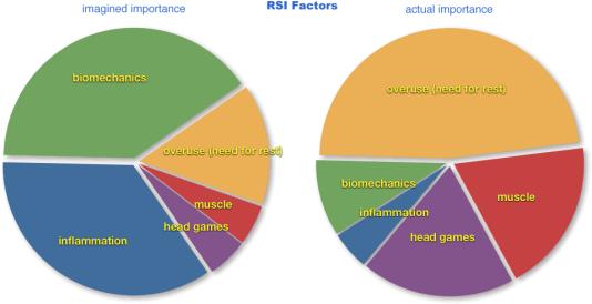 rsi-factors-pie-chart-xxl